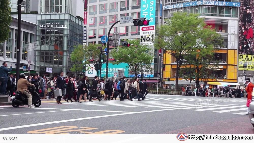 Đi bộ tham gia giao thông tại Nhật